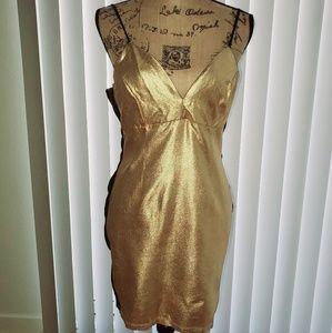 Gold Metalic Dress 💫